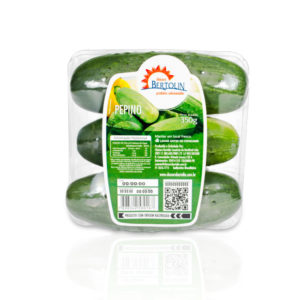 Imagem produto pepino